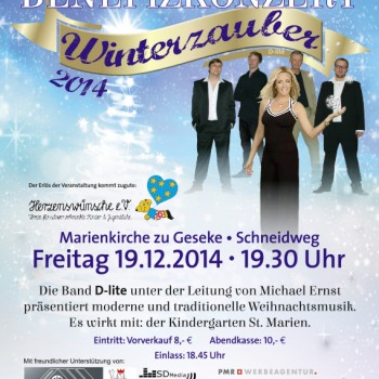 13224_A2_Weihnachtsposter_E1W.indd